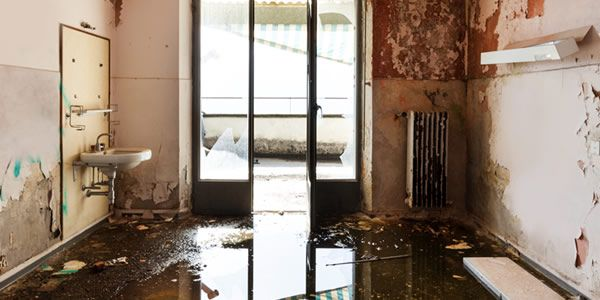 flood damage insurance claim advice free